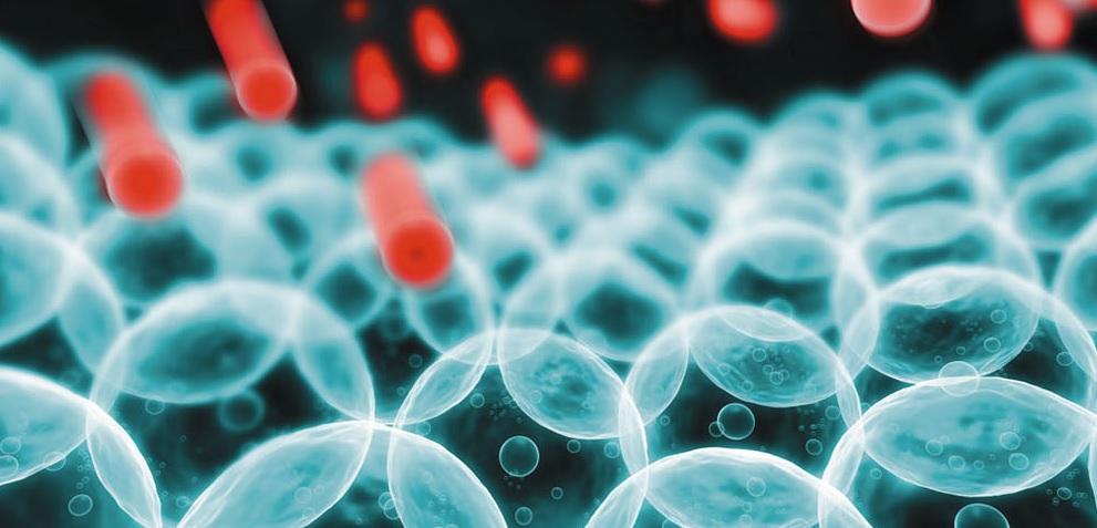 Феруловый пилинг - коктейль биологически активных ингредиентов, заключенных в нанокапсулы